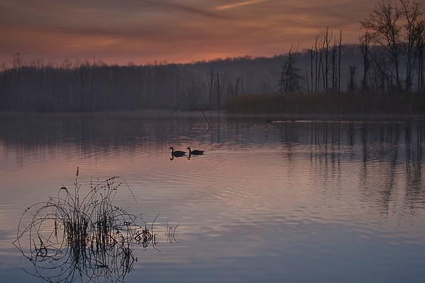 Soltitude at Beaver Marsh