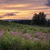 Kendall Hills Sunset
