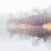 Indigo Fog