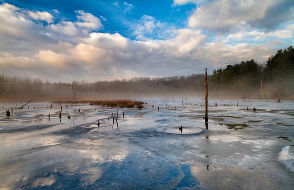 Brecksville Marsh