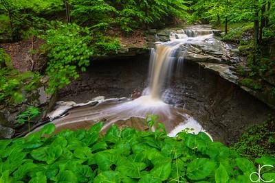 Blue Hen Falls, Cuyahoga Valley National Park, May 2015.