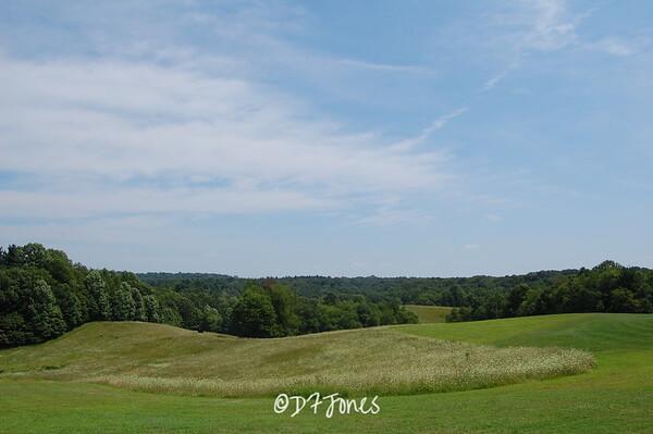 Kendall Hills