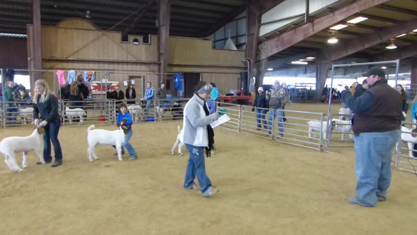 Farm & Ranch Show - 12/8/13