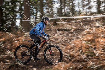 Scott Gravity Enduro 2019 R1-23