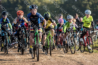 Wessex League CX 2016 R6-3