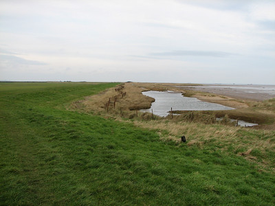 horseshoe point saltwater lagoons