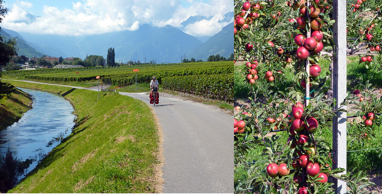 WE FOUND BIKE PATHS AND AMAZING APPLE ORCHARDS IN THE RHONE VALLEY.