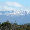 SNOWY MOUNTAINS FROM THE BIKE PATH NEAR THE BEACH.  LOS ANGELES.