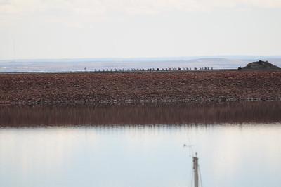 Carter Lake RR