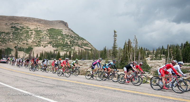 the peloton chases