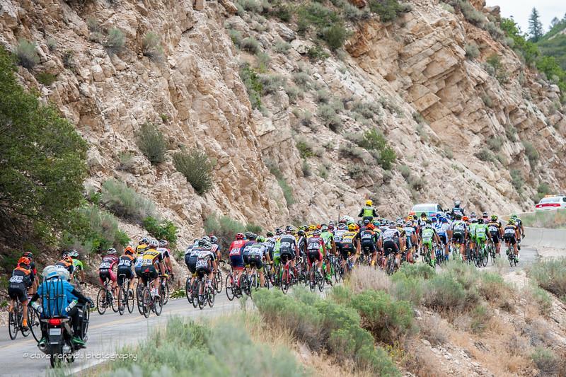 the peloton on the climb, Stage 3 2015 Tour of Utah