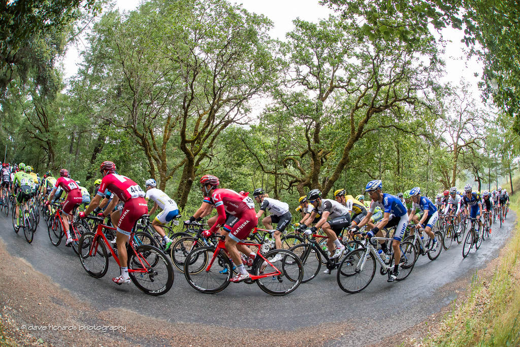 The peloton under a green canopy of moss covered trees, King Ridge Road, Stage 7, 2016 Amgen Tour of California