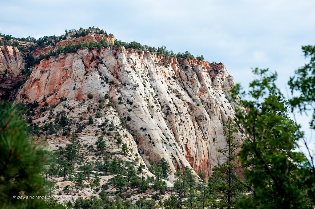 Sandstone cliffs, Zion National Park, Stage 1, 2016 Tour of Utah