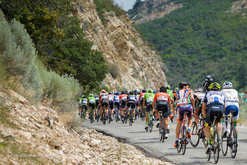 the peloton climbs towards the KOM on North Ogden Divide during Stage 5, 2016 Tour of Utah