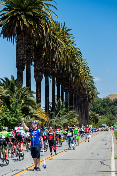 Palm trees overlook the feed zone during Men's Stage 4, 2017 Amgen Tour of California (Photo by Dave Richards, daverphoto.com)