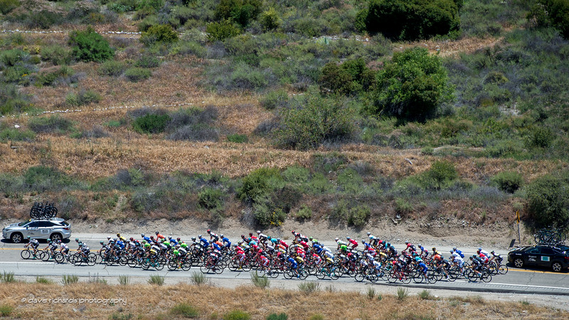 The peloton on the lower slopes of the Mt. Baldy Road climb. Men's Stage 5, 2017 Amgen Tour of California (Photo by Dave Richards, daverphoto.com)