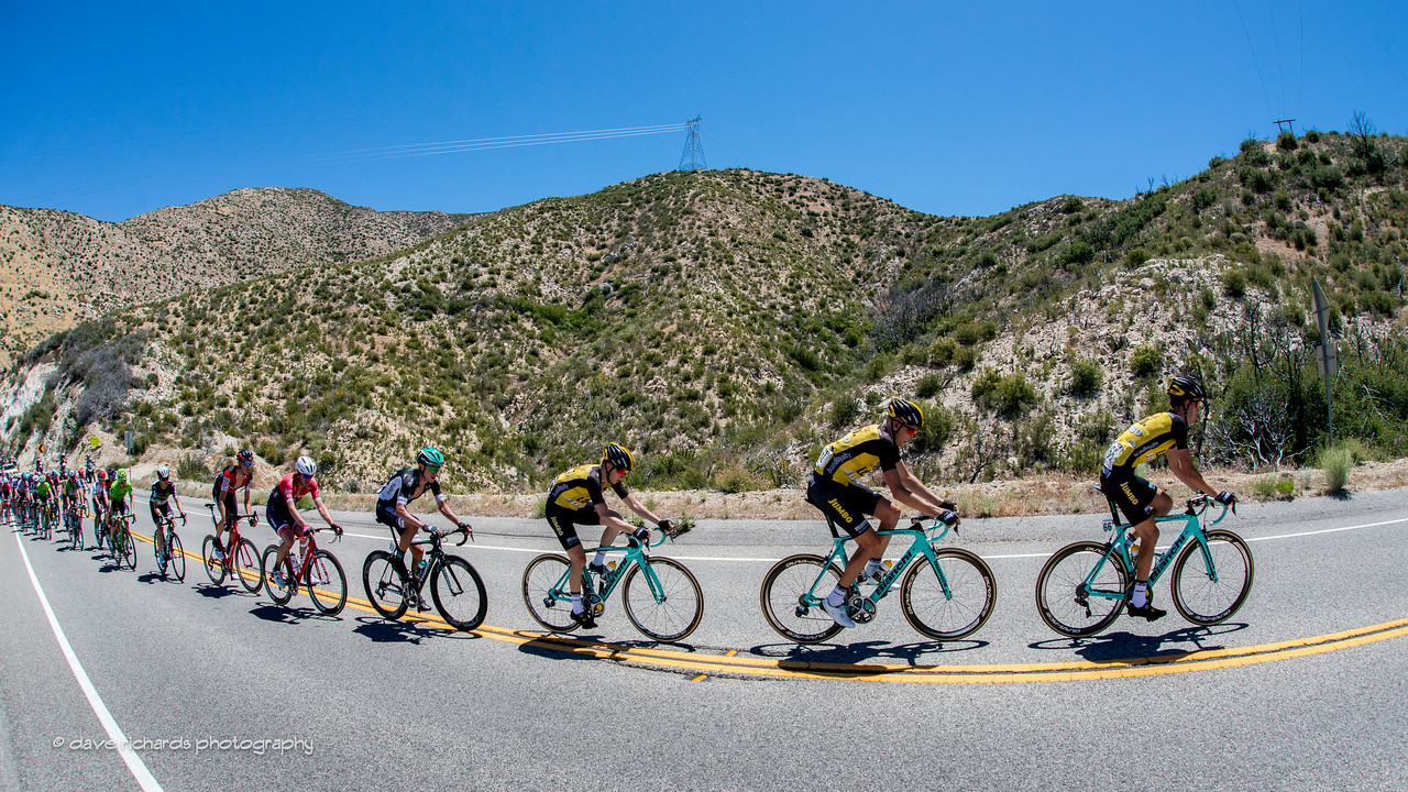 Team Lotto NL-Jumbo riders force the pace up to the Mt. Emma Rd. KOM. Men's Stage 7, 2017 Amgen Tour of California (Photo by Dave Richards, daverphoto.com)