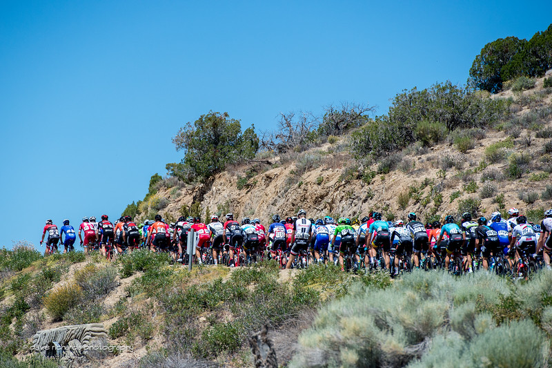 The peloton on the climb. Men's Stage 7, 2017 Amgen Tour of California (Photo by Dave Richards, daverphoto.com)