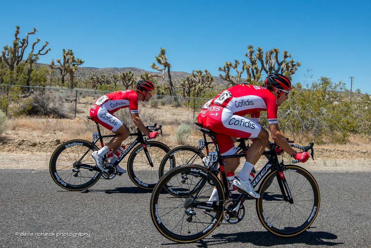 French team riders flanked by  cacti on Men's Stage 7, 2017 Amgen Tour of California (Photo by Dave Richards, daverphoto.com)