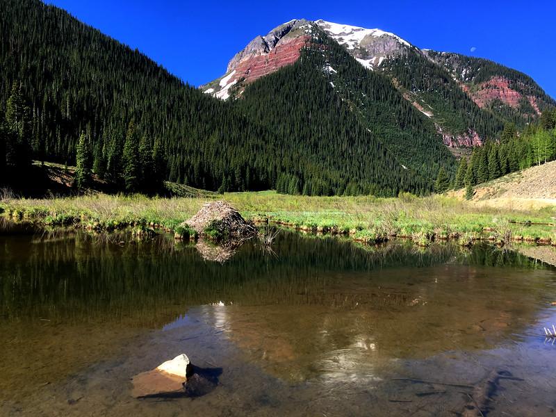 frozen beaver pond on Mineral Creek