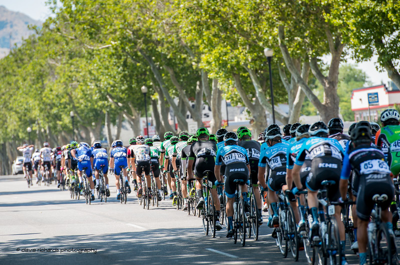 A canopy of trees provides much needed shade for the riders on a very hot day during Stage 2, BrighamCity-SnowBasin,  2017 LHM Tour of Utah (Photo by Dave Richards, daverphoto.com)