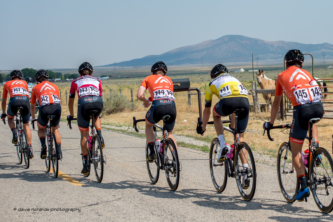 Horse look on as the Rally Cycling riders roll by. Stage 4, South Jordan City to west desert Pony Express Route and back,  2017 LHM Tour of Utah (Photo by Dave Richards, daverphoto.com)