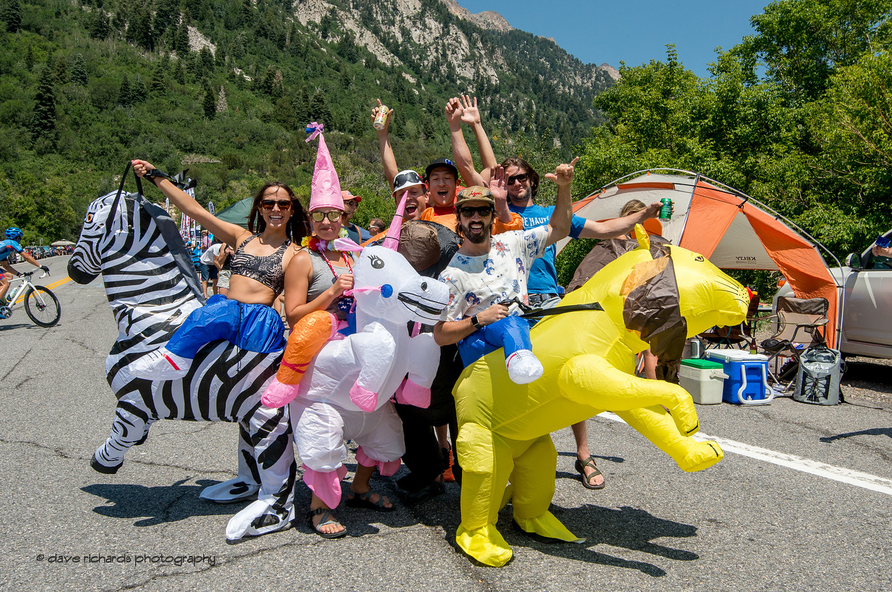 I think they broke ouft of the zoo to cheer the riders along at Tanners Flat on the Little Cottonwood Canyon Climb during Stage 6, Soldier Hollow  to Snowbird Ski Resort,  2017 LHM Tour of Utah (Photo by Dave Richards, daverphoto.com)