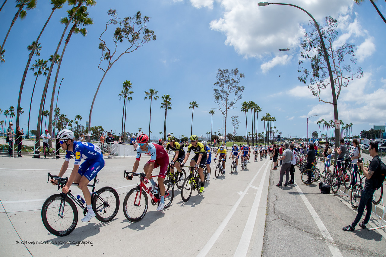 The peloton rolls along under a canopy of palm trees during Men's Stage One in Long Beach, 2018 Amgen Tour of California cycling race (Photo by Dave Richards, daverphoto.com)