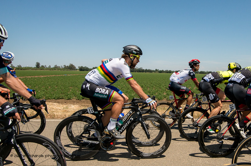 3 time World Road Champ Peter Sagan (Bora Hansgrohe) sits safely out of the wind during Men's Stage Seven, Sacramento, 2018 Amgen Tour of California cycling race (Photo by Dave Richards, daverphoto.com)