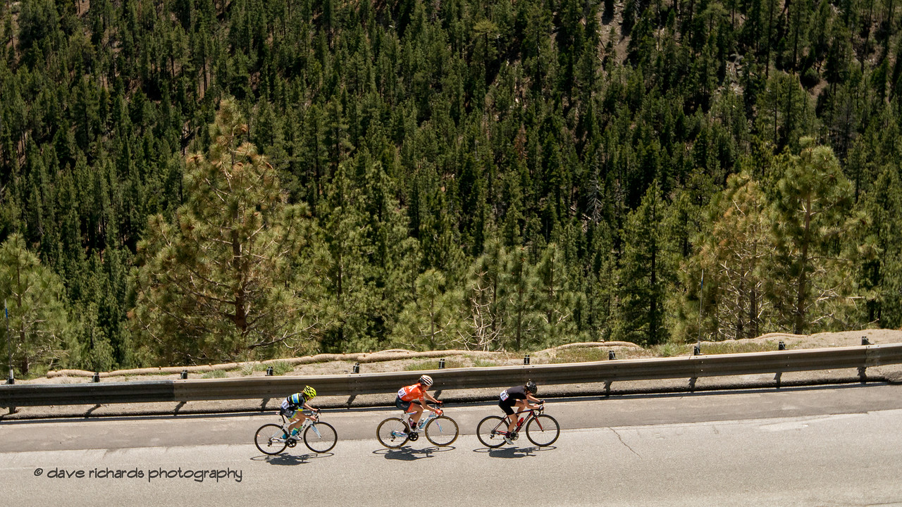 Pine tree forest forms the backdrop of a three rider group. Women's Stage Two, South Lake Tahoe, 2018 Amgen Tour of California cycling race (Photo by Dave Richards, daverphoto.com)