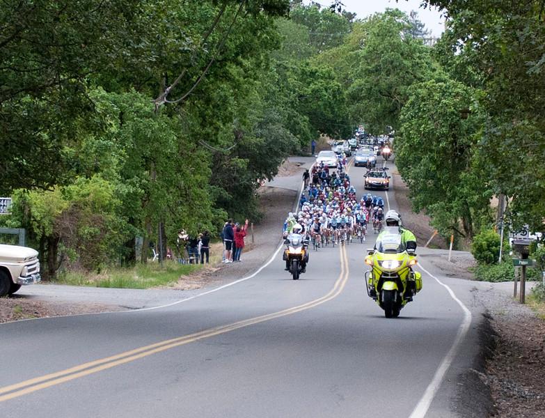 0049 Olivet Road