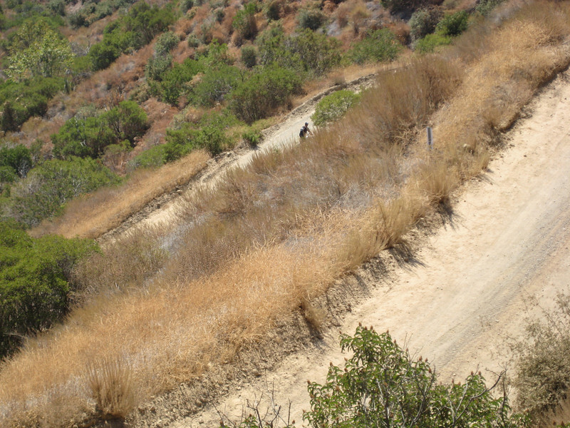 Yeah it was steep.