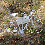 Hobart Ghost Cycle