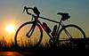 Sunshine On My Bicycle Makes Me Happy