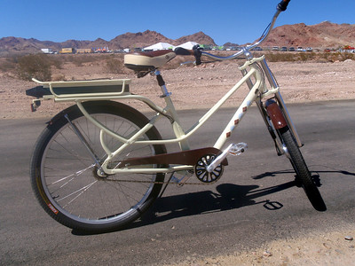 Electric Assist Bike