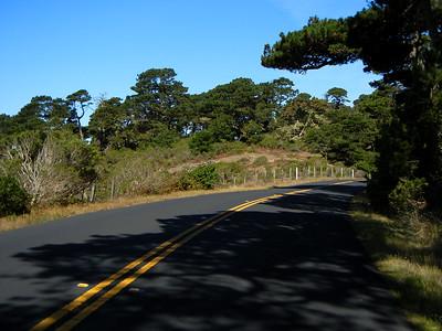 Nicasio to Pierce Point Ranch
