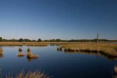 Boerenveensche plassen (Drenthe)