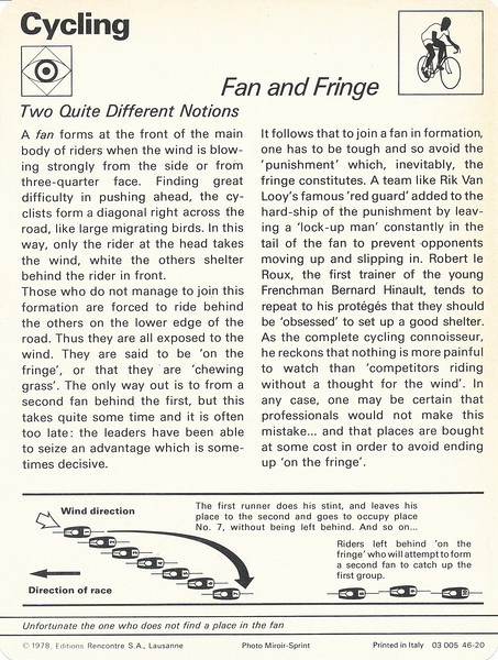 Fan and Fringe Back