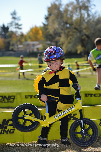 UTCX-COTTONWOOD-10 26 13-273