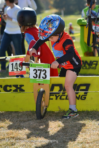 UTCX-COTTONWOOD-10 26 13-265
