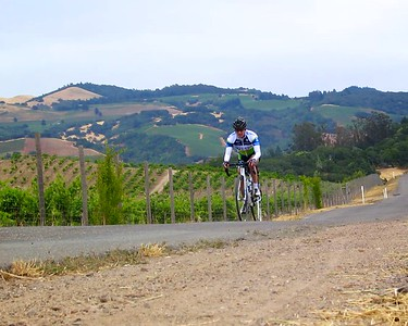 Climbing a country road near Glen Ellen in Sonoma County. Scott Lum