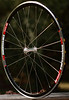 Alchemy Hubs<br /> DT Swiss RR585 rims<br /> Sapim CX-Ray spokes