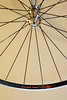 Alchemy hubs<br /> Velocity Major Tom rims<br /> Sapim CX-Ray spokes