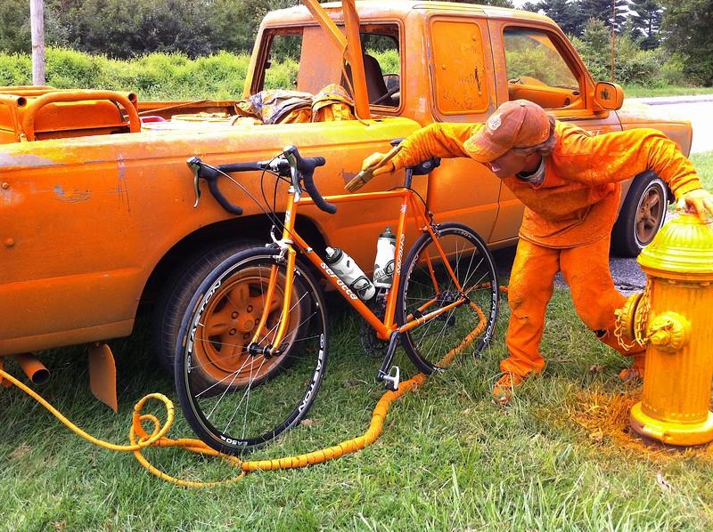 Overzealous Hydrant Painter
