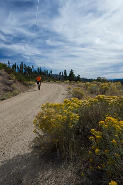 Cycling near Antelope Lake near Taylorsville, CA