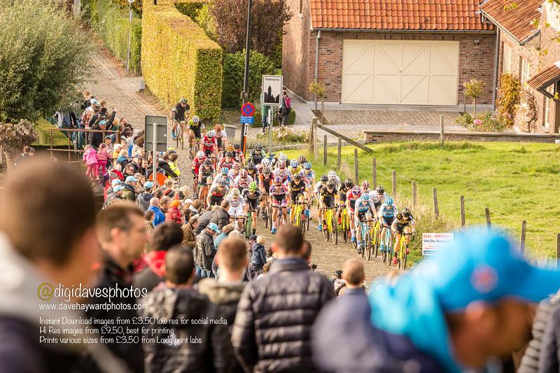 DVVkoppenbergcross-104