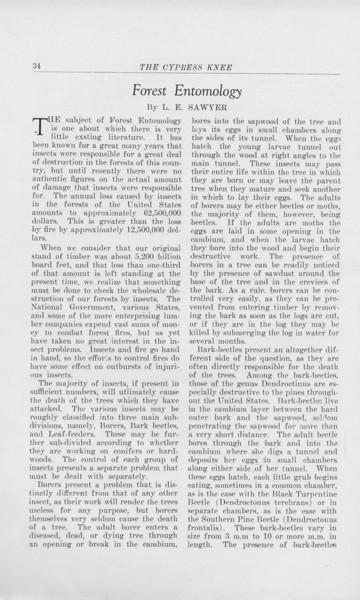 "The Cypress Knee, 1925, ""Forest Entomology"", L. E. Sawyer, pg. 34"