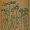 The Cypress Knee, 1925, front cover,