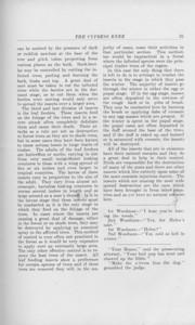 "The Cypress Knee, 1925, ""Forest Entomology"", L. E. Sawyer, pg. 36"