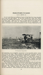 """The Cypress Knee, 1929, """"From Stumps to Rosin"""", R. F. Brown, """"An Economical Stump Mover"""", pg. 53"""